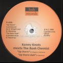 "Lush Records-10""-Up There / Kenny Knots Meets The Bush Chemist + Dub Symphony / The Bush Chemist - 2005 Original Press"