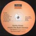 "Lush Records-10""-Up There / Kenny Knots Meets The Bush Chemist + Dub Symphony / The Bush Chemist - 2005 Original Press"