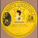 """Roots Vibration-10""""-Armageddon / Jamaiel Shabaka"""