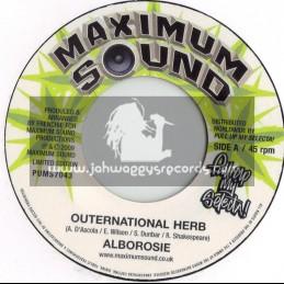 "MAXIMUM SOUNDS 7""-OUTERNATIONAL HEARBS/ALBAROSIE"