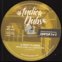 """Indica Dubs-12""""-A New Flower / Indica Dubs Meets Shiloh Ites"""