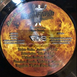 Dub Flash Records-Double-Lp-Escape Velocity: 20 Years Onward To Andromedub / Various Artist