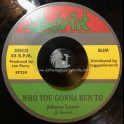 "Black Art-7""-Who You Gonna Run To / Johnny Lover + Zion's Blood / Lee Perry & Heptones"