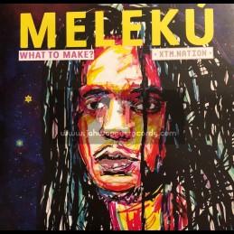 "XTM. Nation-7""-What You Make / Meleku"