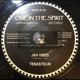 """ONE IN THE SPIRIT RECORDS-7""""-JAH VIBES TENA STELIN"""