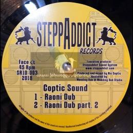 "SteppAddict Records-10""-Raoni Dub / Coptic Sound + Higher Soul / Wise Rockers"