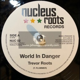 "Nucleus Roots Records-7""-World In Danger / Trevor Roots"