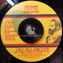 """Jah All Mighty-7""""-Jah Know / Flick Wilson"""