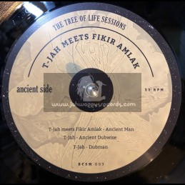 "Basscomesaveme-12""-The Tree Of Life Sessions / T-Jah Meets Fikir Amlak"