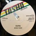 "Tasha Records-12""-Reaping / Michael Palmer + Acting So Strange / Frankie Jones"