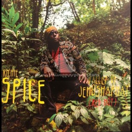"""VP Records-7""""-Valley Of Jehoshaphat / Richie Spice"""