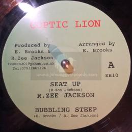 """Coptic Lion-10""""-Seat Up / R Z Jackson"""