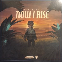 DubShot Records-Lp-Now I Rise / Dre Island