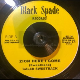 "Test Press-7""-Zion Here I..."