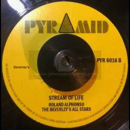 """Pyramid-7""""-Struggle / The..."""