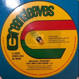 """Greensleeves-12""""-You Are No..."""
