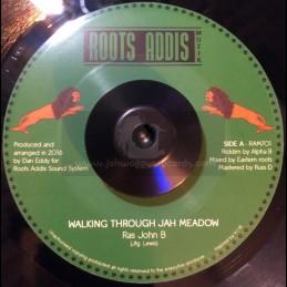 "Roots Addis-7""-Walking..."
