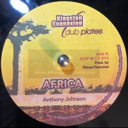 Kingston Connexion Dub...