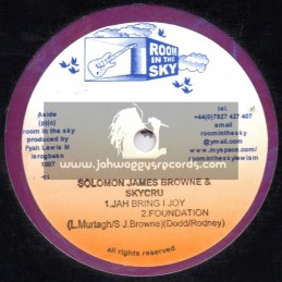 "Room In The Sky-12""-Judgement / Soloman James Brown & Skycru"