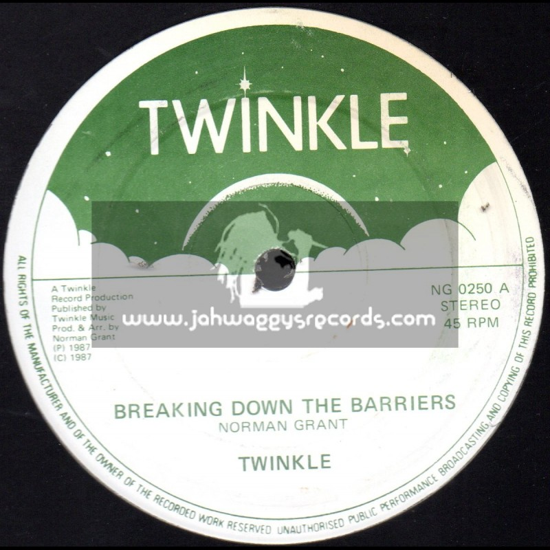 "Twinkle Brothers-12""-Breaking Down The Barriers / The Twinkle Brothers"