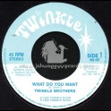 "Twinkle Brothers-7""-What Do You Want / The Twinkle Brothers"