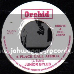 """Orchid-7""""-A Place Called Africa / Junior Byles"""