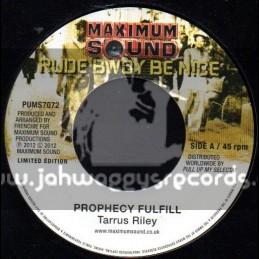"Maximum Sound-7""-Prophecy Fulfil / Tarrus Riley + Chant Rastafari / Tarrus Riley"