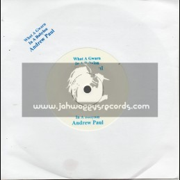 """Test Press-7""""-What A Gwann In A Babylon / Andrew Paul (Roots Mix)"""