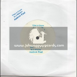 "Test Press-7""-What A Gwann In A Babylon / Andrew Paul (Melodica  Mix)"