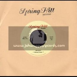 "Spring Hill Records-7""-She Sexy / Micheal Palmer"
