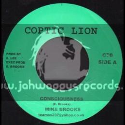 "Coptic Lion-7""-Consciousness / Mike Brooks"