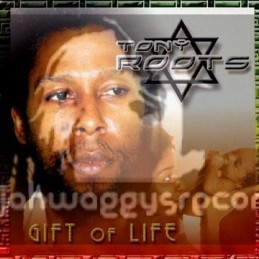 Charm-LP-Gift Of Life / Tony Roots