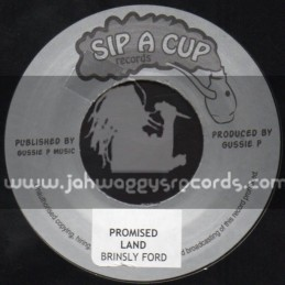 """Sip A Cup Records-7""""-Promised Land / Brinsly Ford"""
