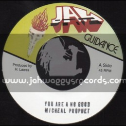 "Jah Guidance-7""-You A No Good / Micheal Prophet"
