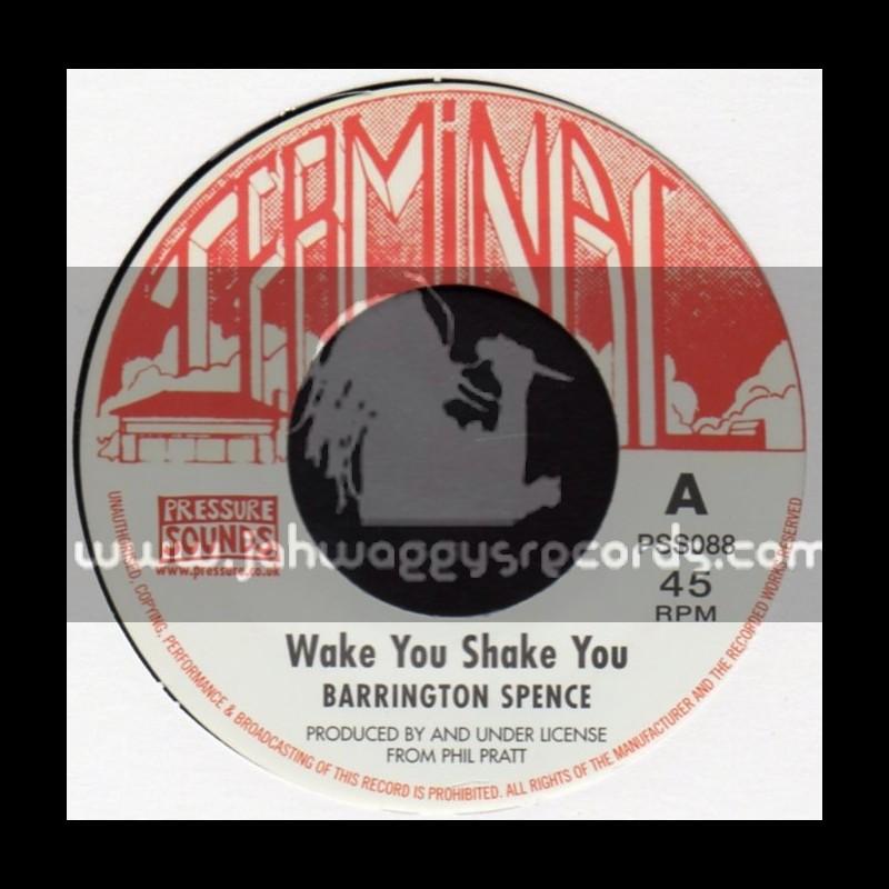 Terminal-7-Wake You Shake You + Where Your Footsteps Led / Barrington Spence