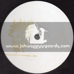 "Friendly Rasta-12""-MASH Up 003 / Gold Stamp"
