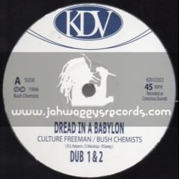 "KDV-12""-Dread In A Babylon + This Sound / Culture Freeman - The Bush Chemists"