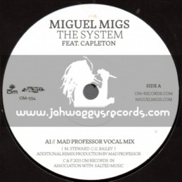 """Miguel Migs-7""""-The System / Capleton (Mad Prof)"""
