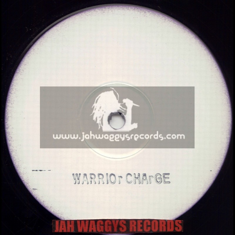 """WARRIOR CHARGE REMIX-12""""-BLANK ONE SIDED RECORD"""