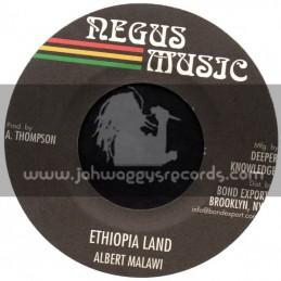 "Negus Music-7""-Ethiopia Land / Albert Malawi"