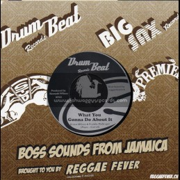 """Drum Beat-7""""-What You Gonna Do About It / Ernest Wilson & Freddie McGreggor + Death In The Areana / Hippy Boys"""