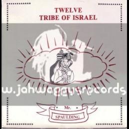Hot Milk-LP-Twelve Tribe Of Israel / Mr Spaulding