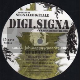 "Digi. Signa-12""-Blazing Fire / Murray Man - Zion Train"