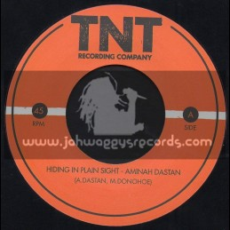 "TNT Recording Company-7""-Hiding In Plain Sight / Aminah Dastan"