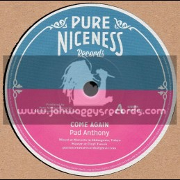 """Pure Niceness Records-12""""-Come Again / Pad Anthony"""