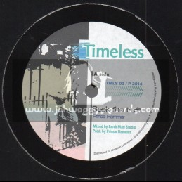 "Timeless-10""-Dubplate-Seek The Truth / Prince Hammer"