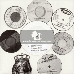 "Coptic Lion-7""-Not A Angel / E. Brooks & E. Holt"