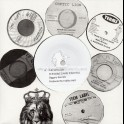 "Coptic Lion-7""-Wild Side / Diggory Kenrick"