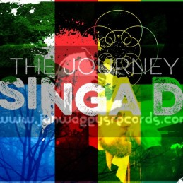 Aether Sounds-Lp-The Journey / Singa D