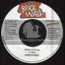 "Brick Wall-7""-Tribulation / Junior Reid"